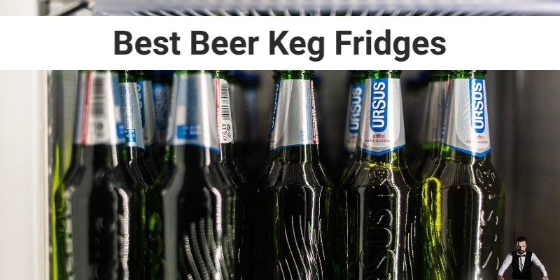 Best Beer Keg Fridges for Chilling 2020